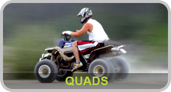 Category Quads